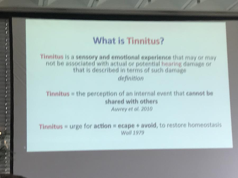 Tinnitus Research Initiative 2018 Conference in Germany